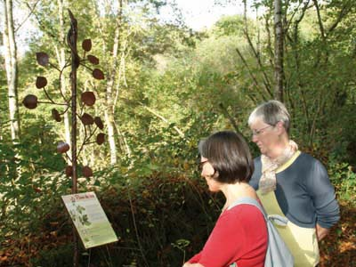 Parcours d'interprétation sur le Tilleul à Vigeville