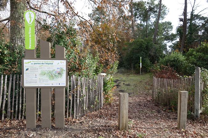 Sentier sur la biodiversité aux portes du CHU de Bordeaux