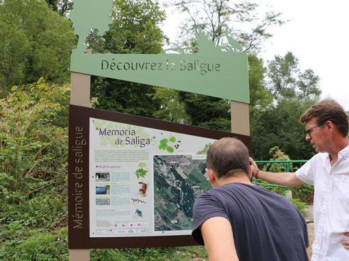 Sentier des Saligues du gave de Pau